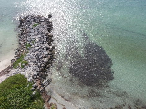 Miami Geo Quiz #14: Dividing Rocks. Source: Matthew Toro. September 20, 2014.