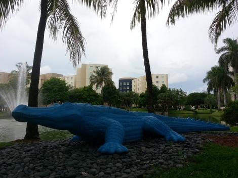 Miami Geo Quiz #16: Rare Blue Gator. Source: Matthew Toro. September 26, 2014.