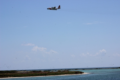 A United States Coast Guard patrol plane flies above a sub-group of the 23 Cubans who swam to shore. Photo Source: Matthew Toro. August 4, 2015.
